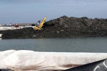 l'escavatore nel porto