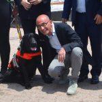 Mozione di sfiducia, ecco perchè il sindaco Formica si mangerà la colomba (e non solo)